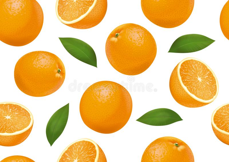 Oranges on background. Detailed vector seamless background for your projects stock illustration