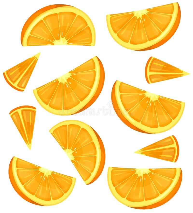 Oranges background or pattern isolated on white. Colorful summer oranges. Vector illustration.  vector illustration