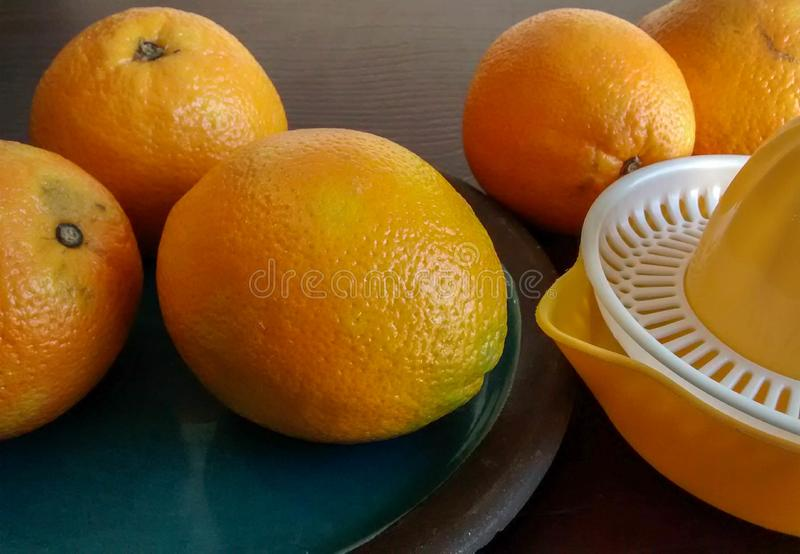Oranges on ceramic plate, next to hand juicer royalty free stock image