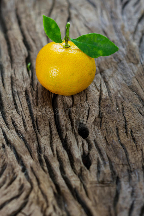 Oranges (Citrus Japonica Thunb) on a wooden. Background royalty free stock image