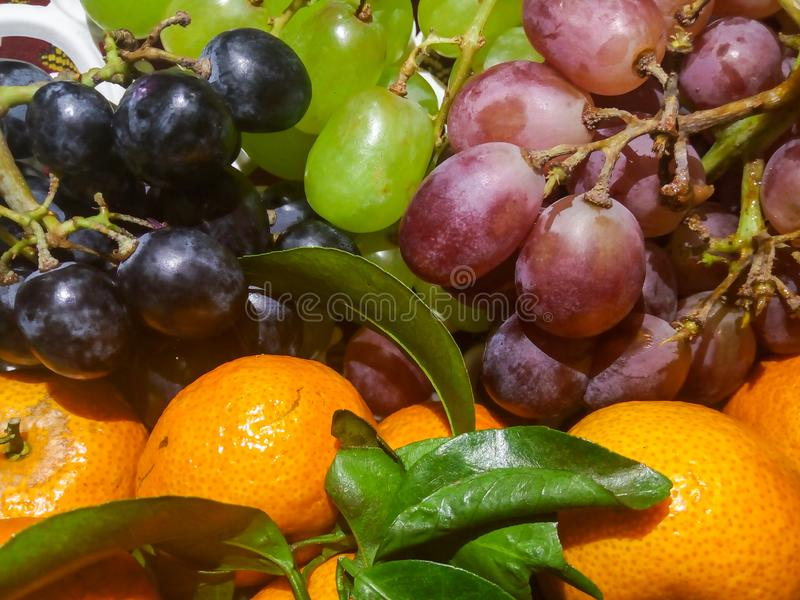 Natural looking oranges and colorful grapes in a bucket royalty free stock photos