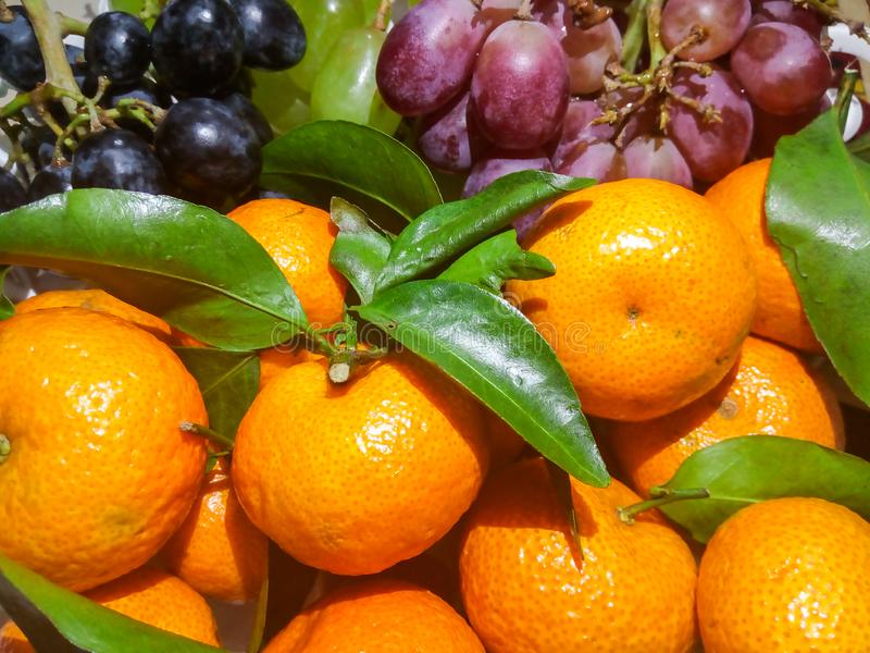 Oranges and colorful grapes in a bucket stock images
