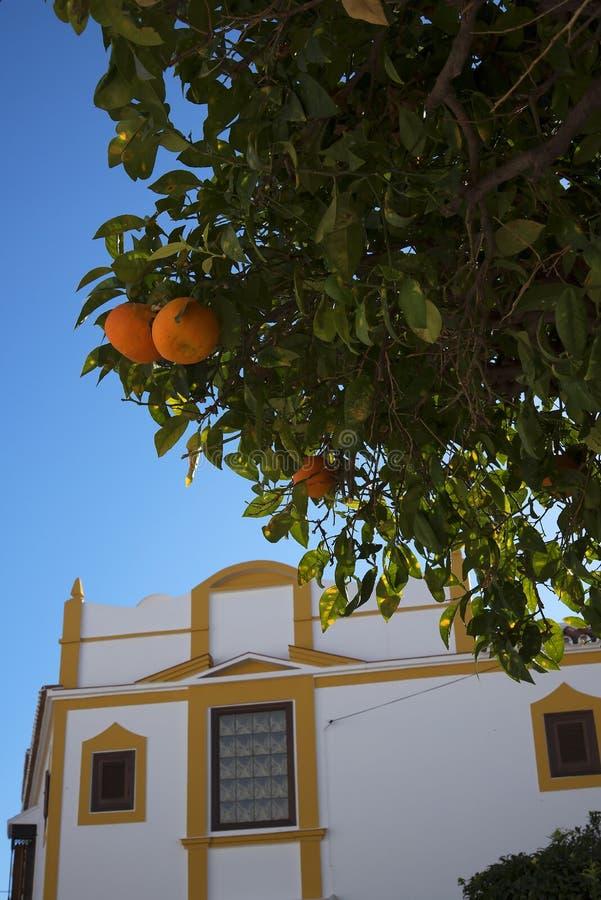 Oranges dans la rue à Nerja, une station de vacances espagnole somnolente sur Costa Del Sol près de Malaga, Andalousie, Espagne,  photographie stock