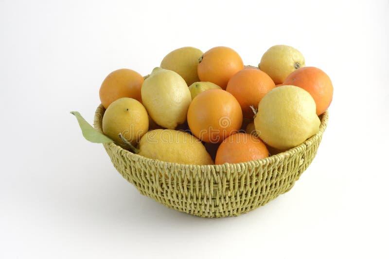 Oranges et citrons photographie stock libre de droits