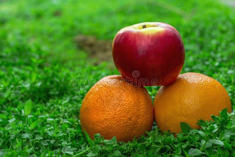Oranges et pomme sur l'herbe photographie stock