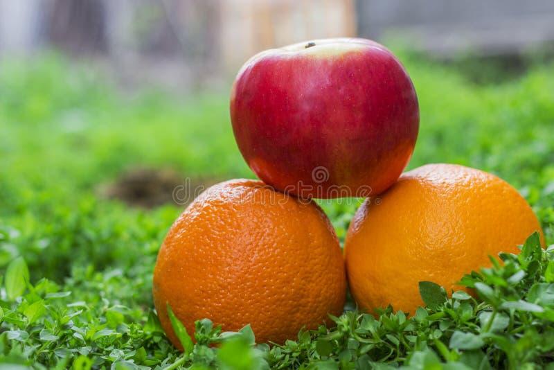 Oranges et pomme sur l'herbe images stock