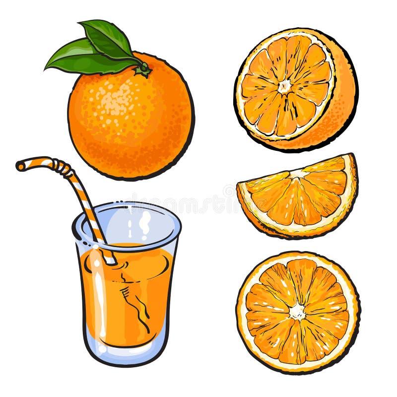 Oranges et un verre de jus fraîchement serré, croquis de vecteur illustration libre de droits