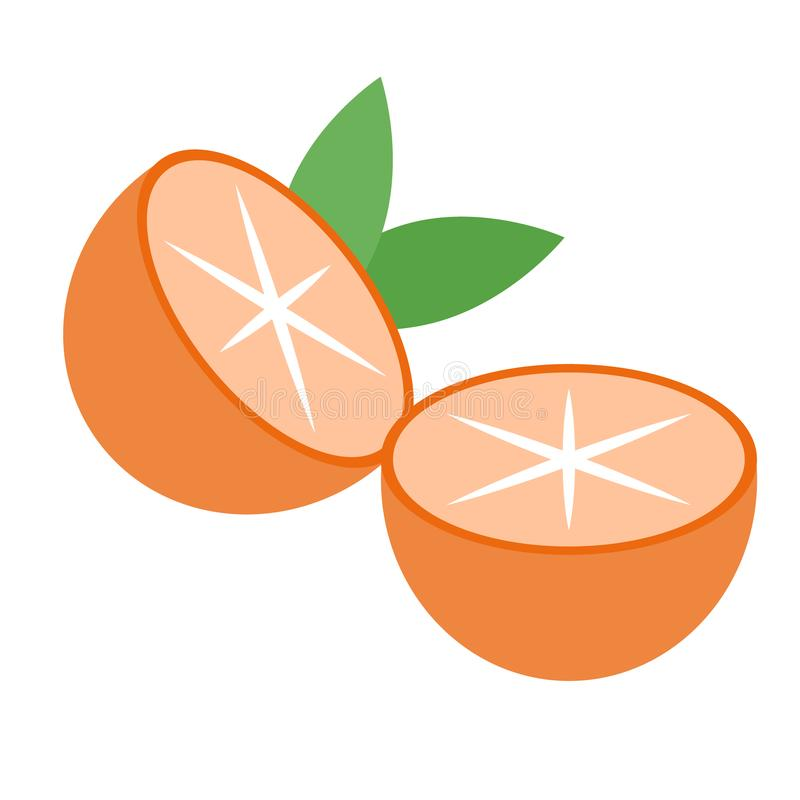 Oranges flat illustration. Home, travel and lifestyle series vector illustration