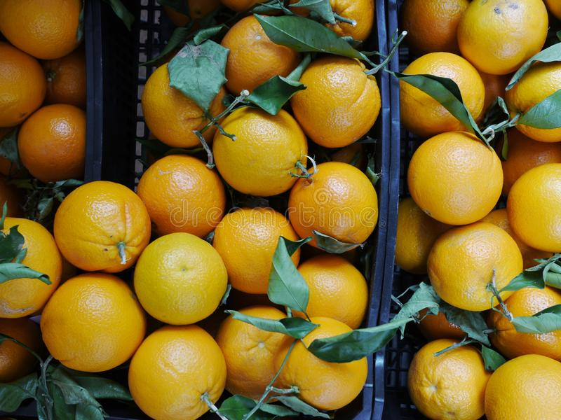 Oranges oranges fraîches photographie stock
