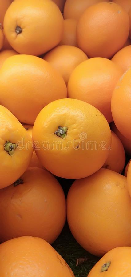 Oranges. fresh and juicy stock images