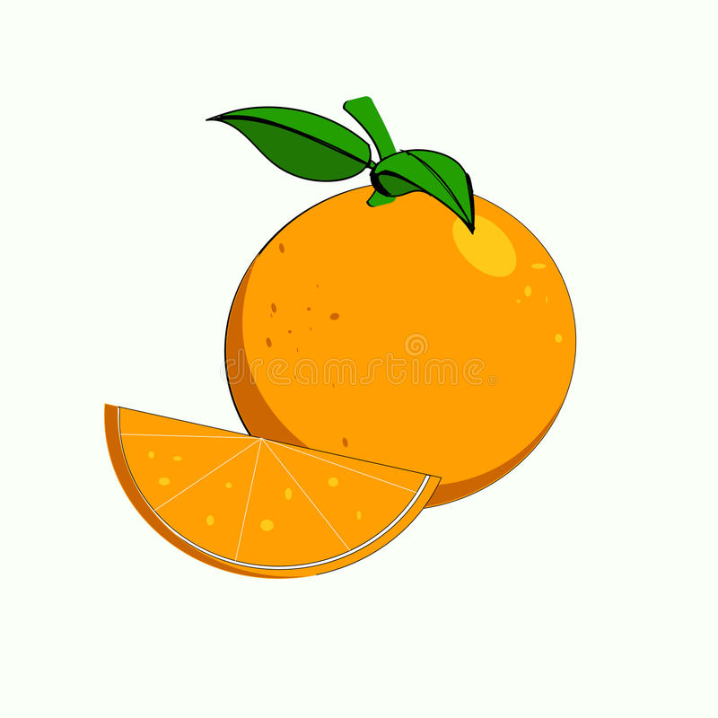 Oranges. A fresh oranges which will give a healthy vector illustration
