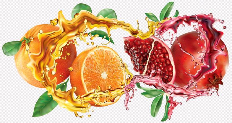 Oranges fruits and Pomegranates into of burst splashes of juices. Oranges and pomegranate fruits into of burst splashes of juices on white background. Vector stock illustration