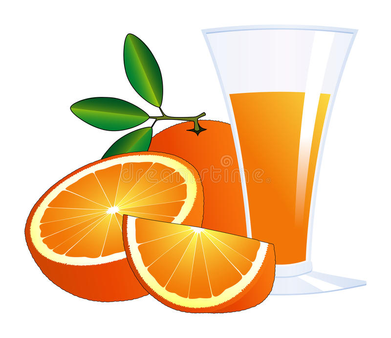 Oranges and a glass of juice. Isolated illustrations stock illustration