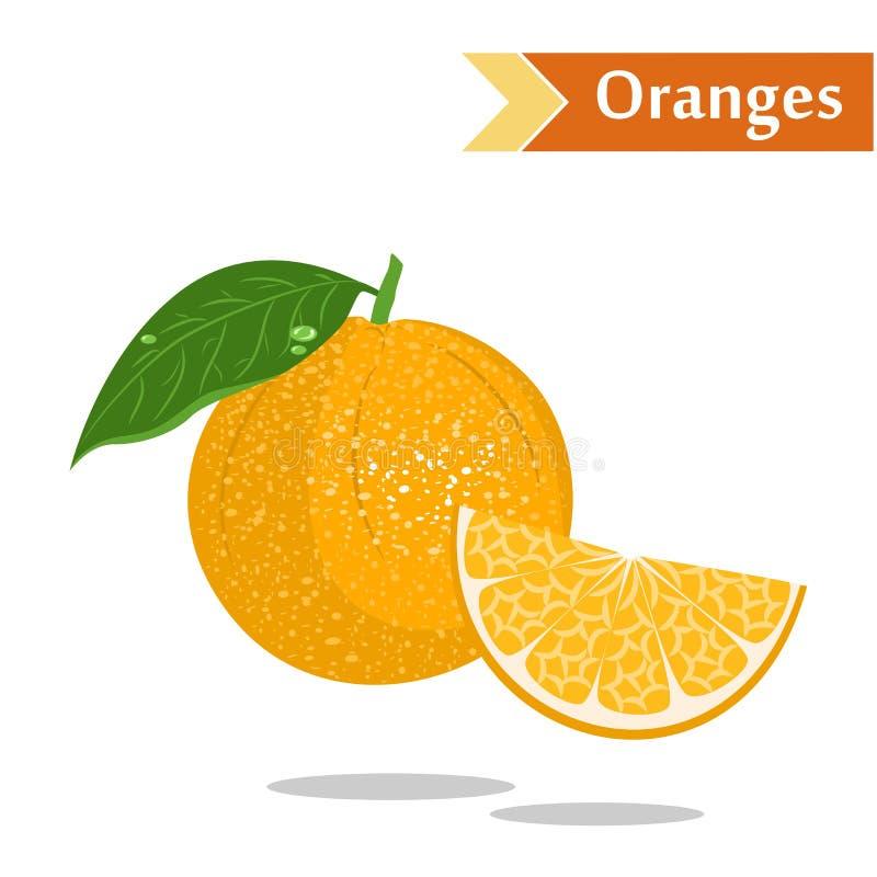 Oranges. Illustration with juicy and tasty fruits - oranges stock illustration