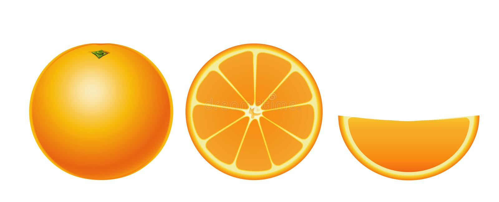 Oranges isolated (simple). Oranges isolated (simple version, other fruits & berries are in my gallery vector illustration
