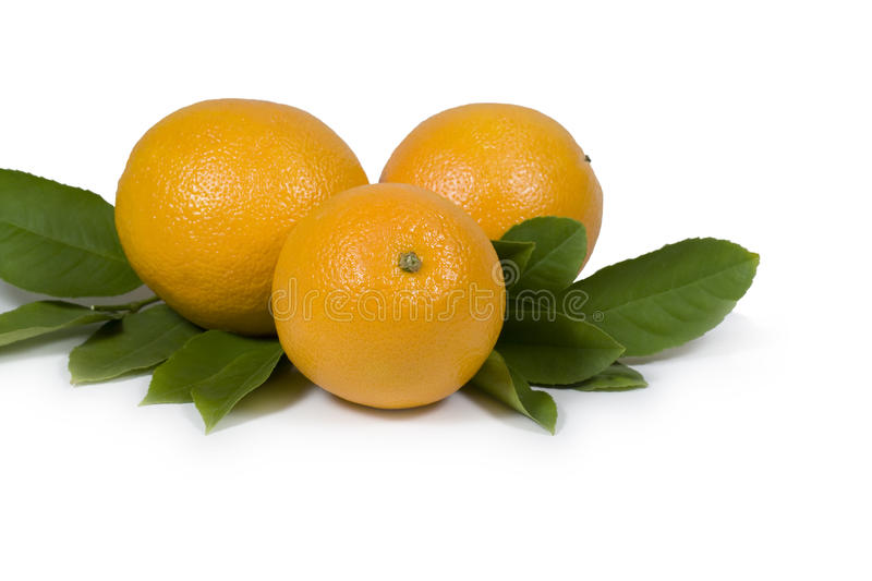 Oranges & Leaves Royalty Free Stock Photo