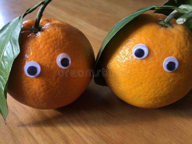 Oranges with leaves and googly eyes. Creative fun food photography :Freshly picked organic oranges with googly eyes royalty free stock photo