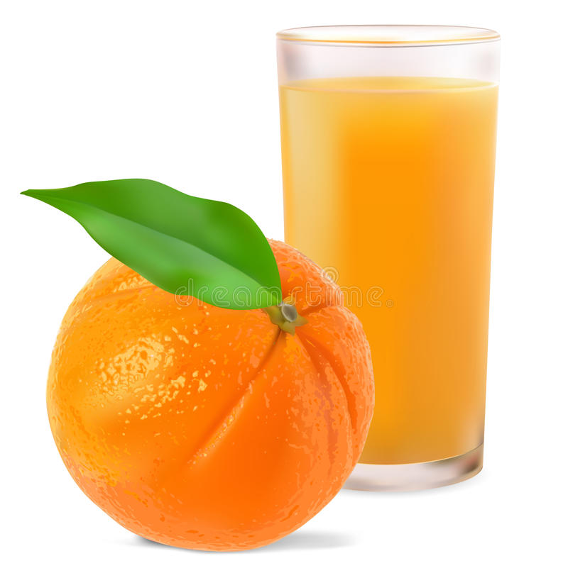Oranges and orange juice. On white background royalty free illustration