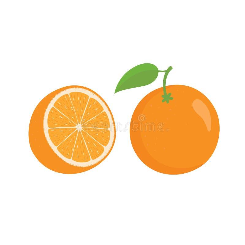 Oranges orange slice, half cut orange and front view of cut ripe orange. vector illustration