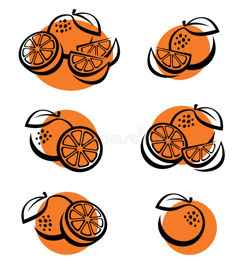 Oranges set. Vector vector illustration