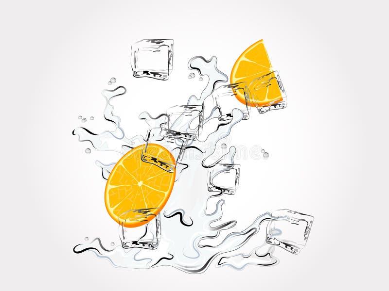 Download Oranges in splash stock vector. Illustration of crystal - 22774825
