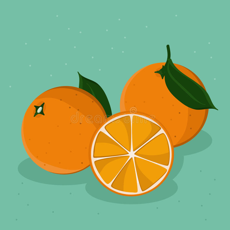 Oranges. Three oranges on teal background - illustration stock illustration