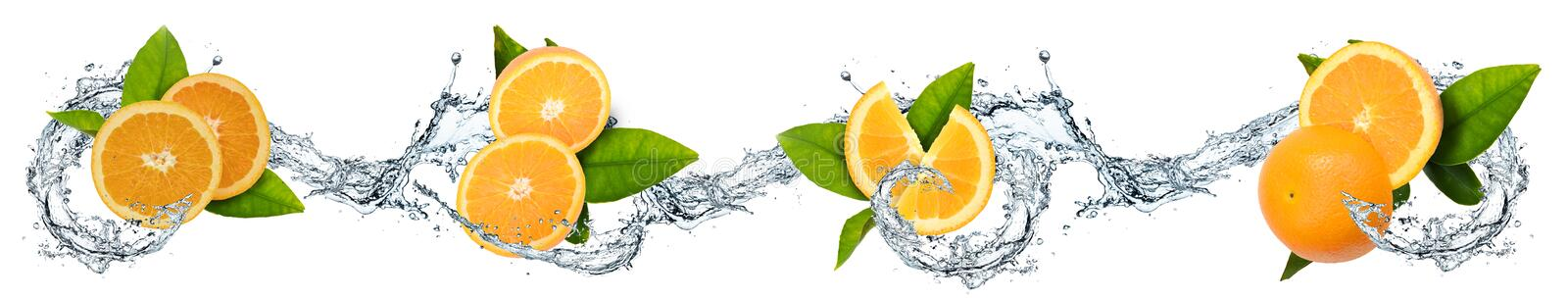 Oranges and water splash. Oranges, leaves and water splash on white background stock illustration