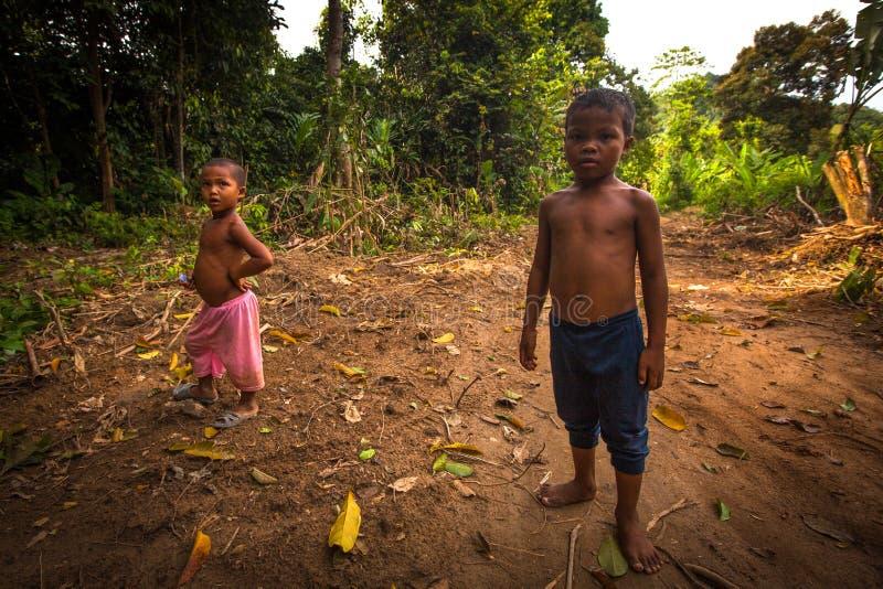 Orangotango não identificado Asli das crianças em sua vila em Berdut, Malásia imagens de stock royalty free
