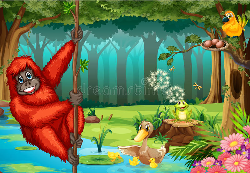 Orangután en selva stock de ilustración