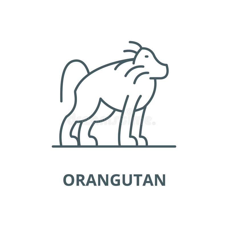 Orangutan διανυσματικό εικονίδιο γραμμών, γραμμική έννοια, σημάδι περιλήψεων, σύμβολο διανυσματική απεικόνιση