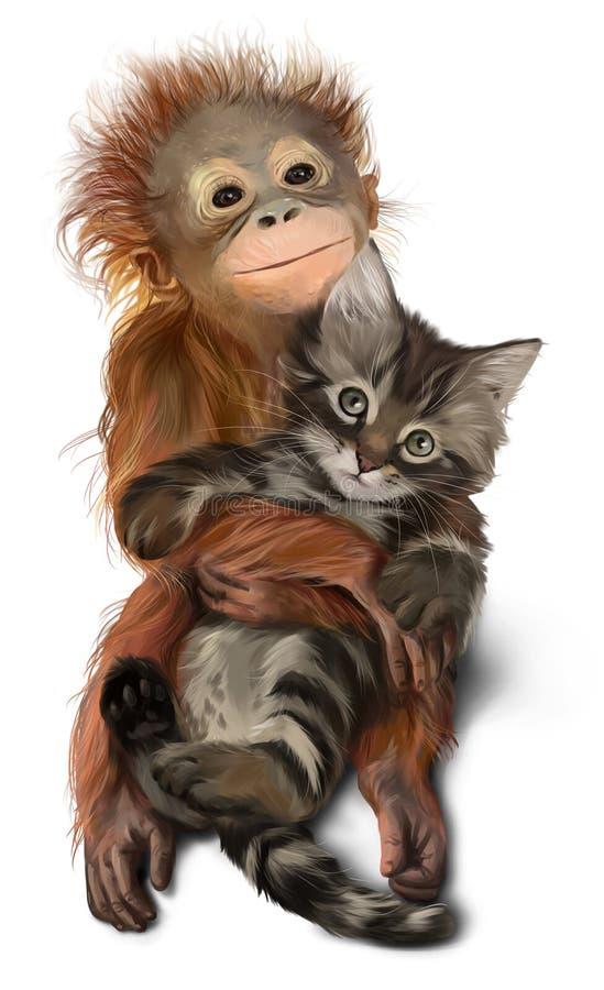 Orangutan μωρών αγκαλιάζει το γατάκι απεικόνιση αποθεμάτων