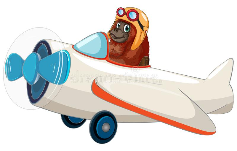 Orangutan που οδηγά ένα αεροπλάνο απεικόνιση αποθεμάτων