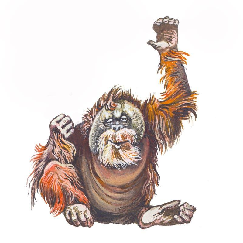 Orangutan illustrazione di stock