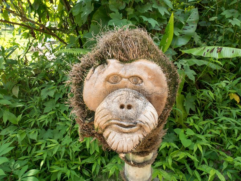 Orangutan Head Wood Sculpture Carved by Hand royalty free stock photos