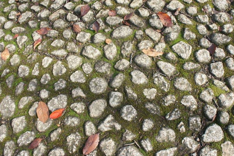 Oranje blad op de Textuur van Vloerstenen stock foto