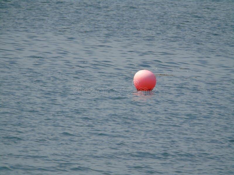 Oranje boeivlotters op water royalty-vrije stock afbeeldingen