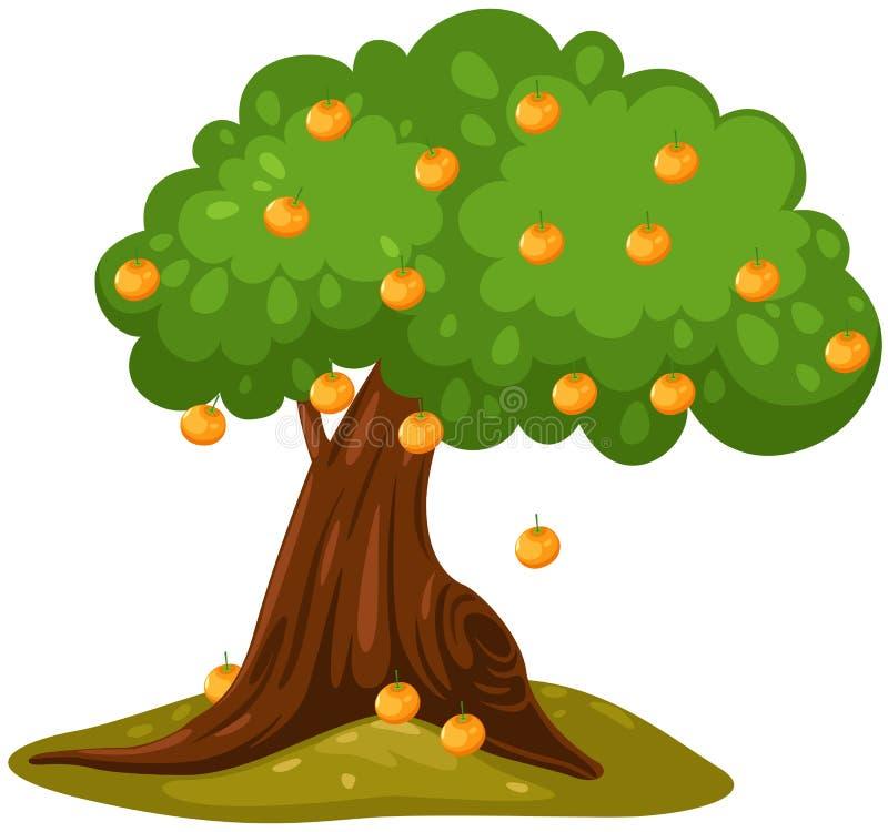 Oranje boom royalty-vrije illustratie