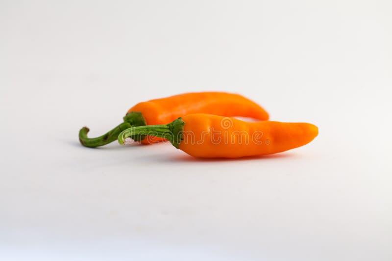 Oranje capsicum op een witte achtergrond stock afbeeldingen