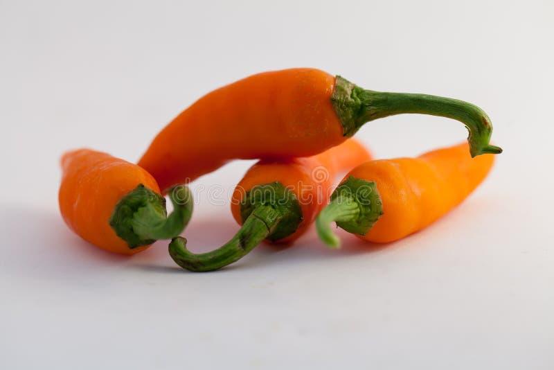 Oranje capsicum op een witte achtergrond stock foto