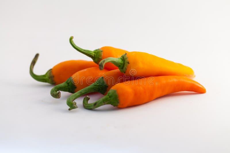 Oranje capsicum op een witte achtergrond royalty-vrije stock foto