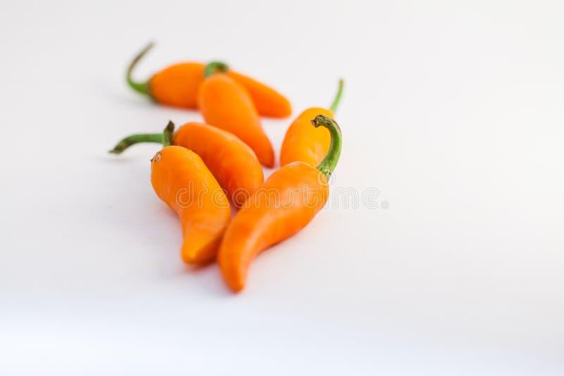 Oranje capsicum op een witte achtergrond stock foto's