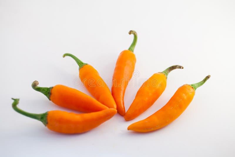 Oranje capsicum op een witte achtergrond royalty-vrije stock afbeeldingen