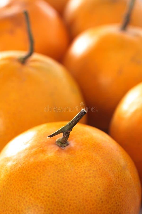 Oranje close-up royalty-vrije stock foto's