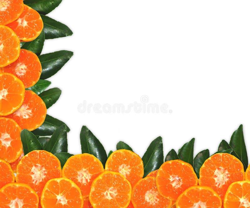 Oranje die fruit op bladerentextuur, op witte achtergrond wordt geïsoleerd royalty-vrije stock foto's