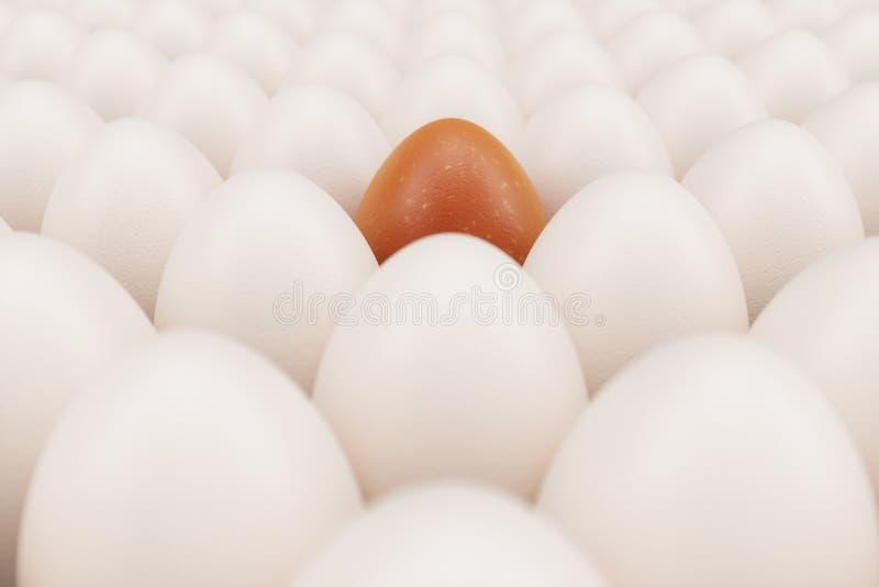 Oranje ei in een centrum Achtergrond van witte kippeneieren met één oranje ei Symbool van Pasen, vakantie Gelukkig concept stock afbeeldingen
