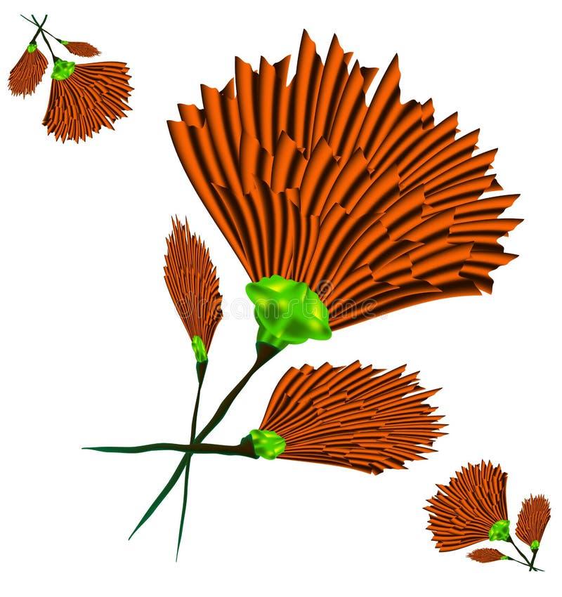 Oranje kruidnagel vector illustratie