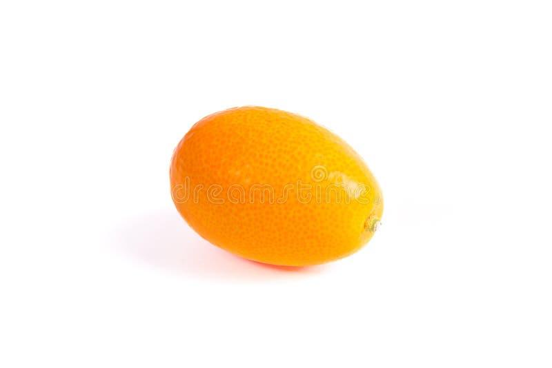 Oranje Kumquat op witte achtergrond stock afbeelding