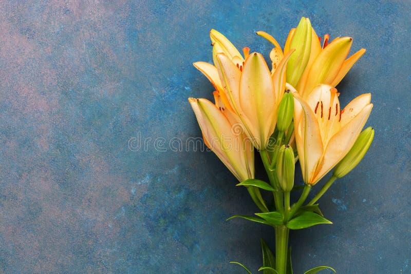 Oranje Leliebloem op blauwe abstracte achtergrond Vlak leg van de exemplaarruimte Mooi kunstbeeld stock foto