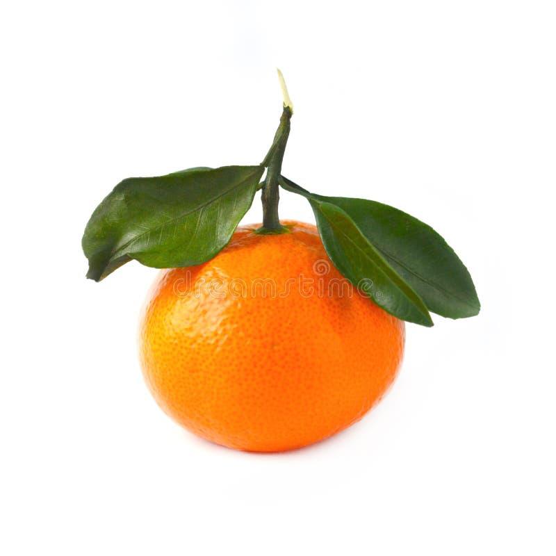 Oranje mandarijn of clementine met groen die blad op whit wordt geïsoleerd stock afbeeldingen