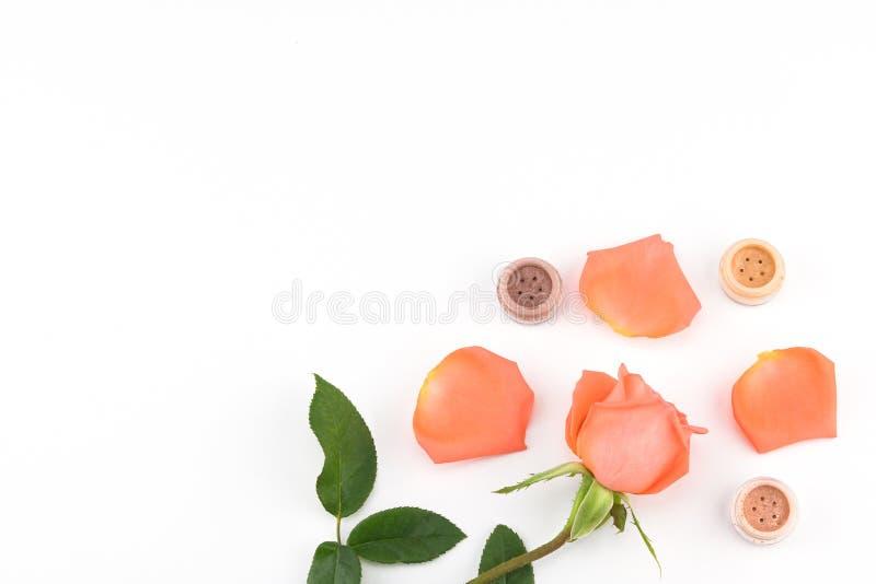 Oranje nam en oogschaduw met exemplaarruimte toe stock foto